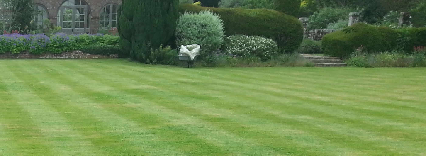 lawn care bournemouth