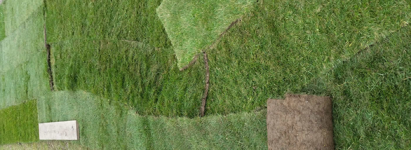 returfing lawn Dorset, Wiltshire and Hampshire